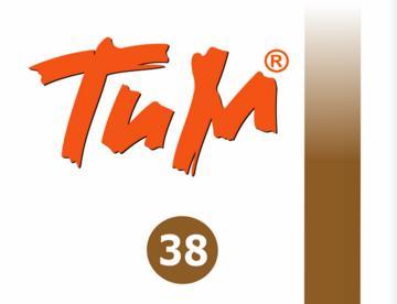 Клей для бетонных блоков ТИМ 38